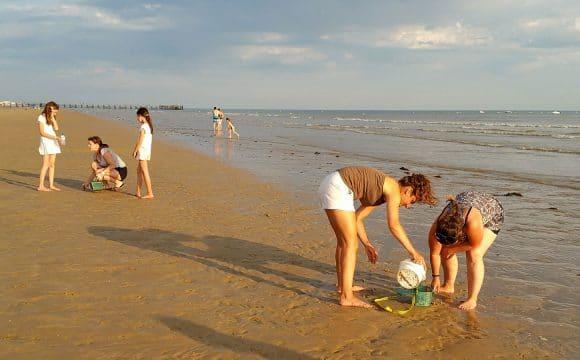 Activités nature en Vendée, pèche à pieds
