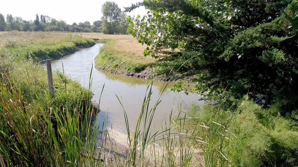 Balade-a-pied-randonnee-vendee-sentier-de-la-dune-au-Marais1