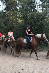 activites-balade-cheval-vendee-notredamedemonts