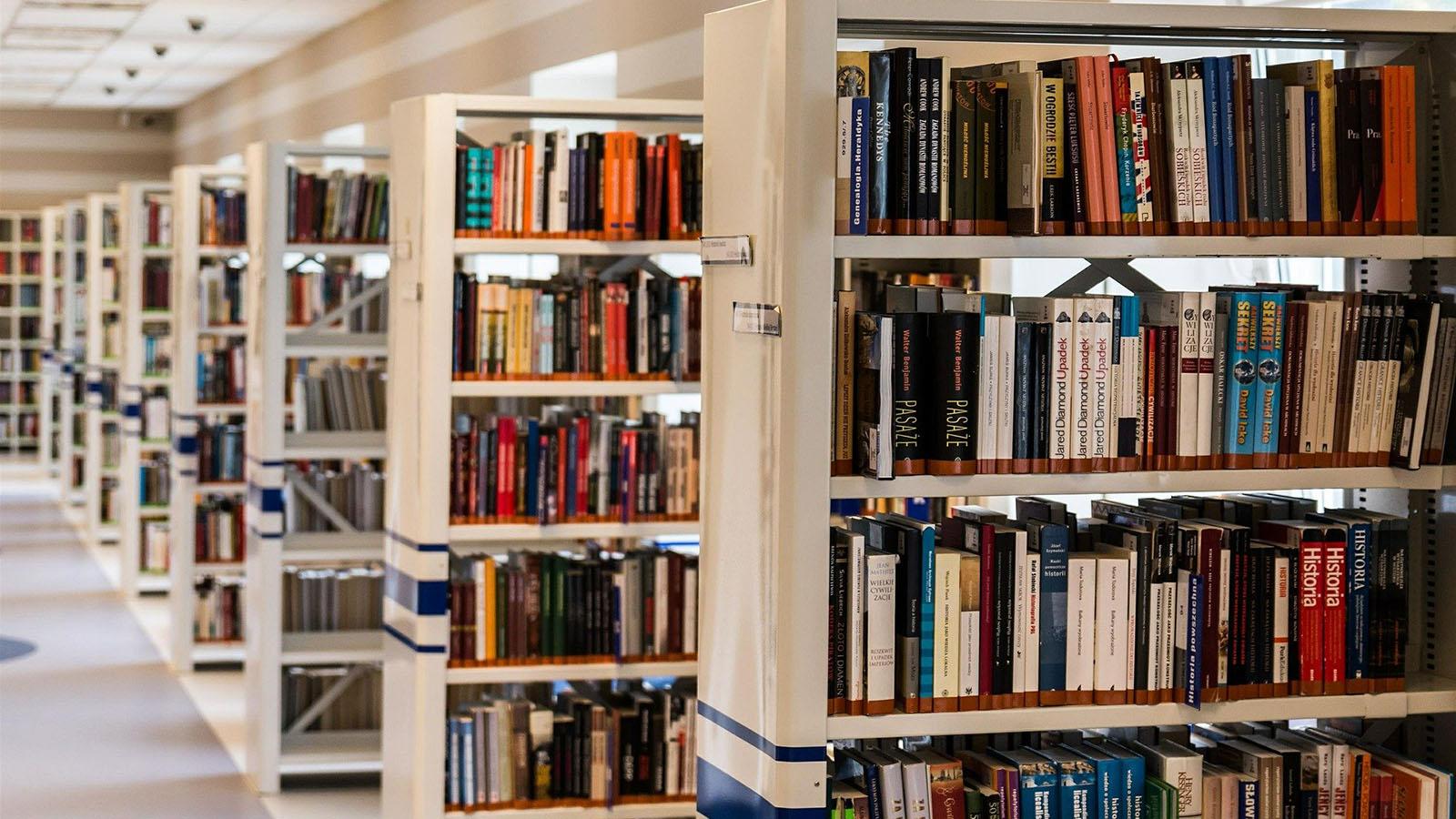 bibliotheque-labarredemonts