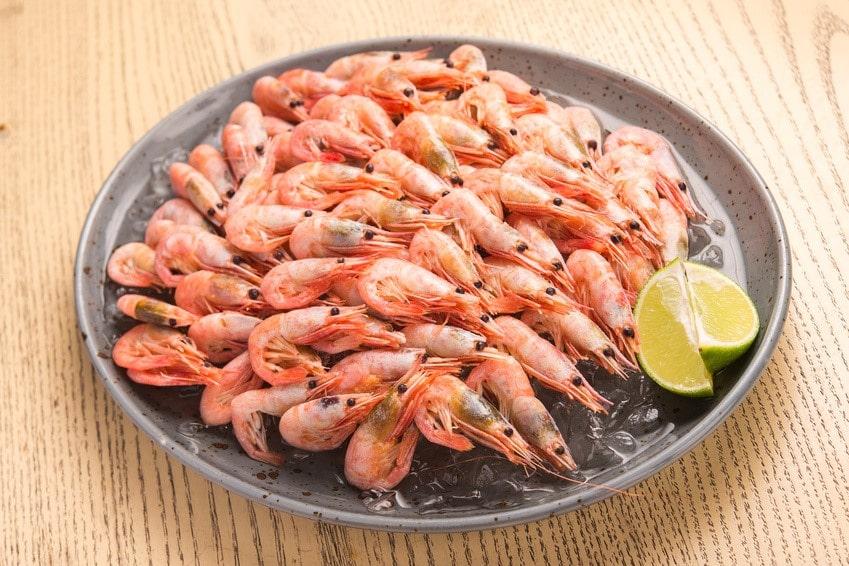 peche-crevettes-paysdesaintjeandemonts