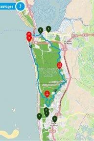 Trail – Circuit des plages sauvages