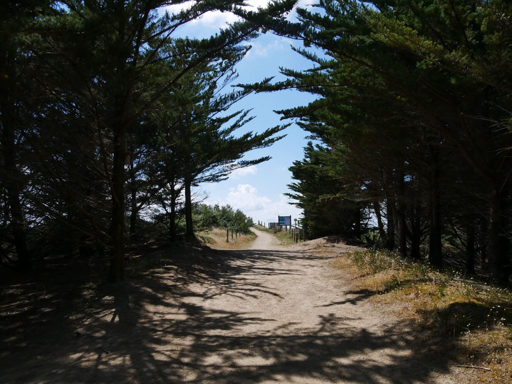plage-de-la-renaudiere-notredamedemonts3