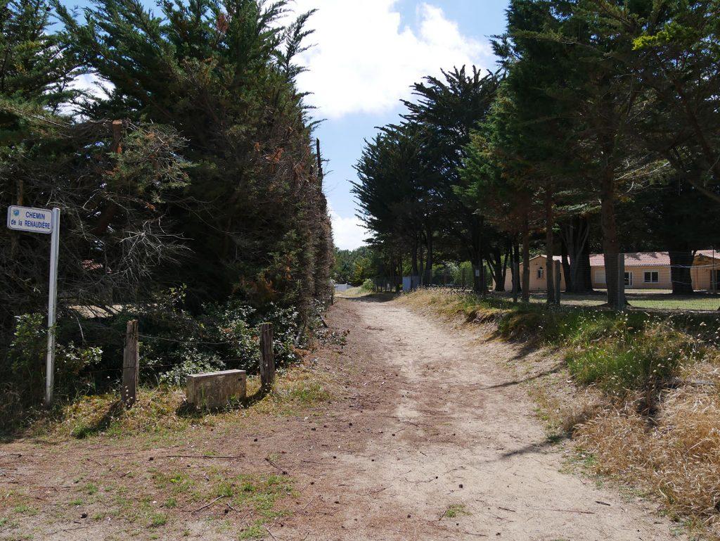 plage-de-la-renaudiere-notredamedemonts6