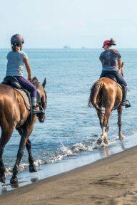 balade à cheval - notre dame de monts